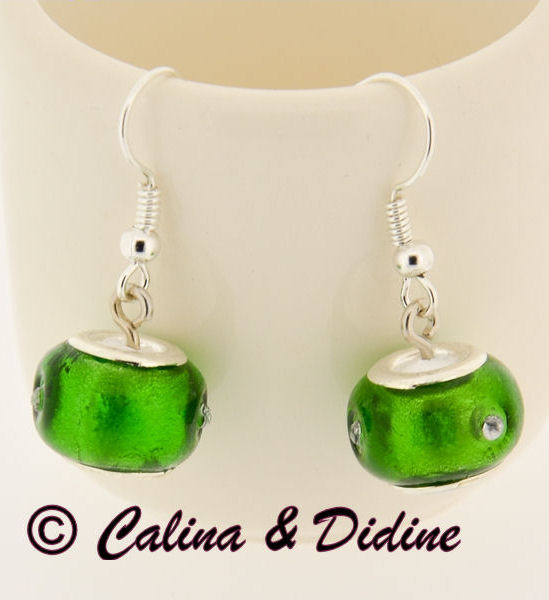 http://calina.free.fr/fimo/calina-didine/16-17-11-2013/Image5.jpg